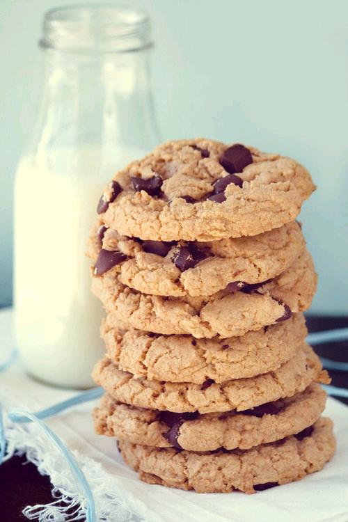leche fría, leche, galletas, chispas de chocolate, leche y galletas,