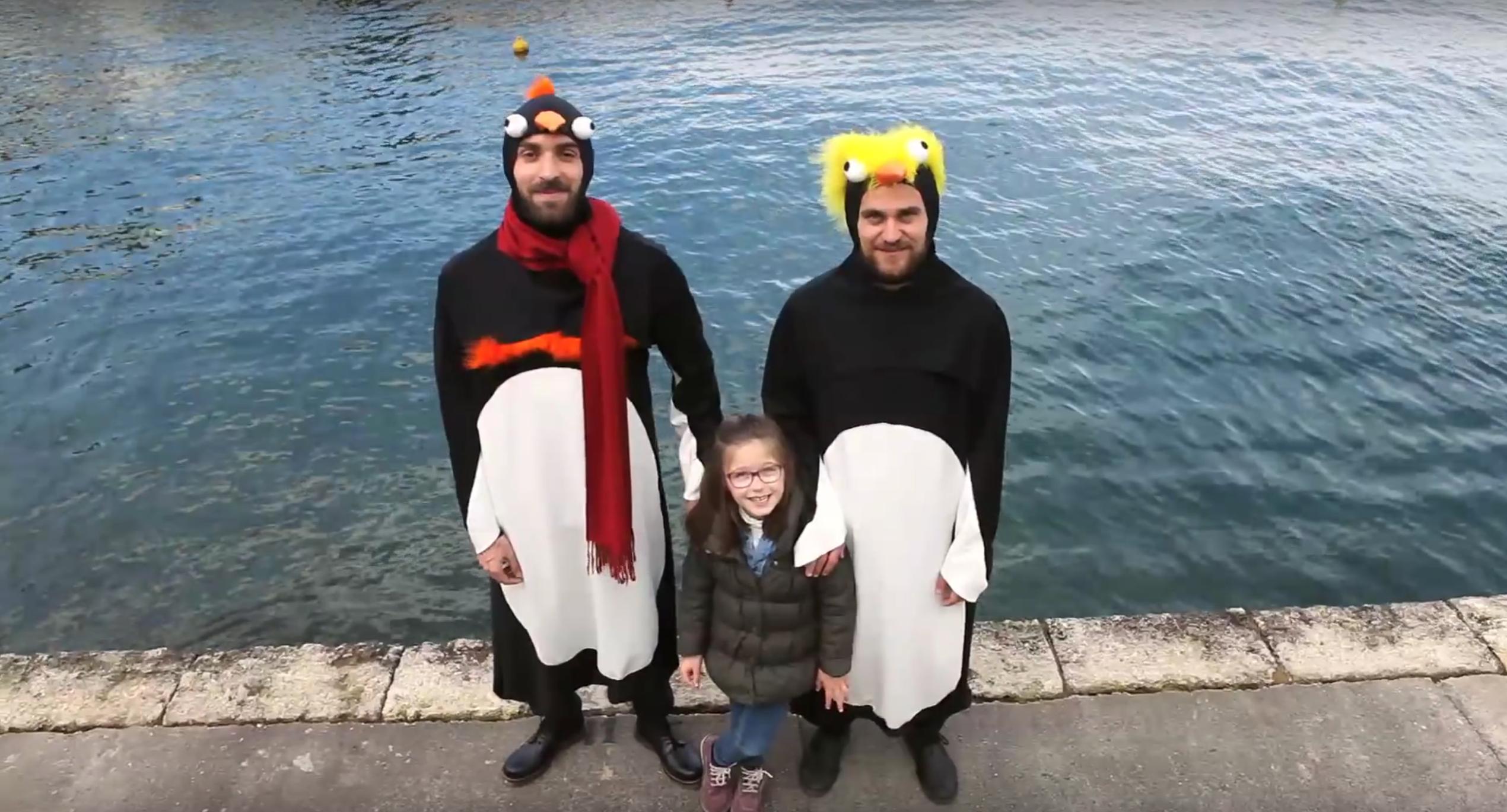 Todo saldra bien, pinguino, cortometraje